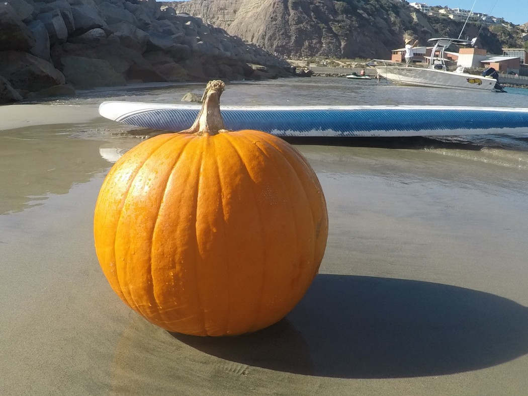 Health Benefits of Pumpkin for Surfers