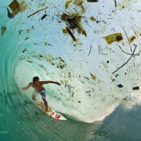 Stop the Reign of Plastic